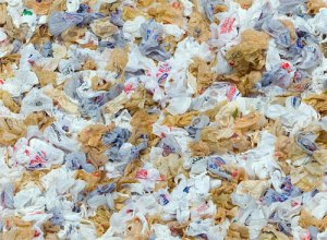 Plastic Bags in DC